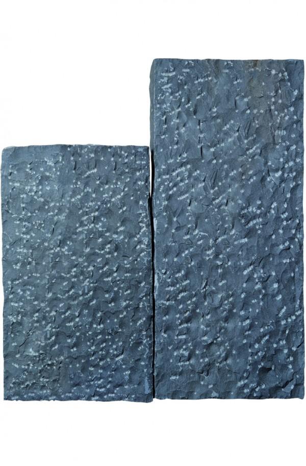 Sanoku Basalt 10x50 günstig kaufen